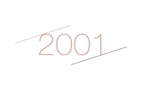 2001 - Maia Eventi - organizzazione mercatini artigiani ed eventi in piazze, strade e centri commerciali